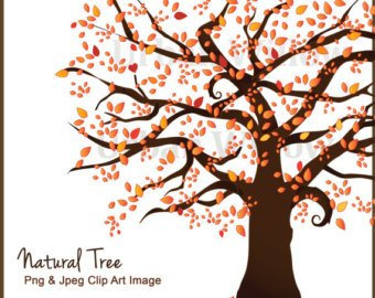 340x270 Vector Family Tree Etsy