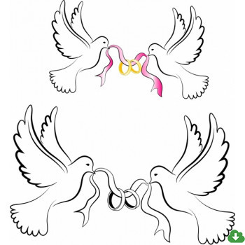 350x350 Free Vector Wedding Vector White Wedding Doves With Rings 1.39mb