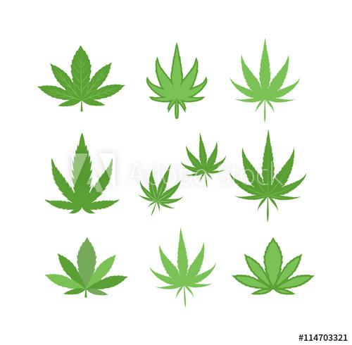 500x490 Cannabis Marijuana Hemp Leaf Flat Icon Vector Green Medicine Weed
