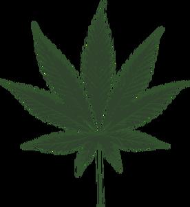 276x300 1675 Free Vector Marijuana Plant Public Domain Vectors