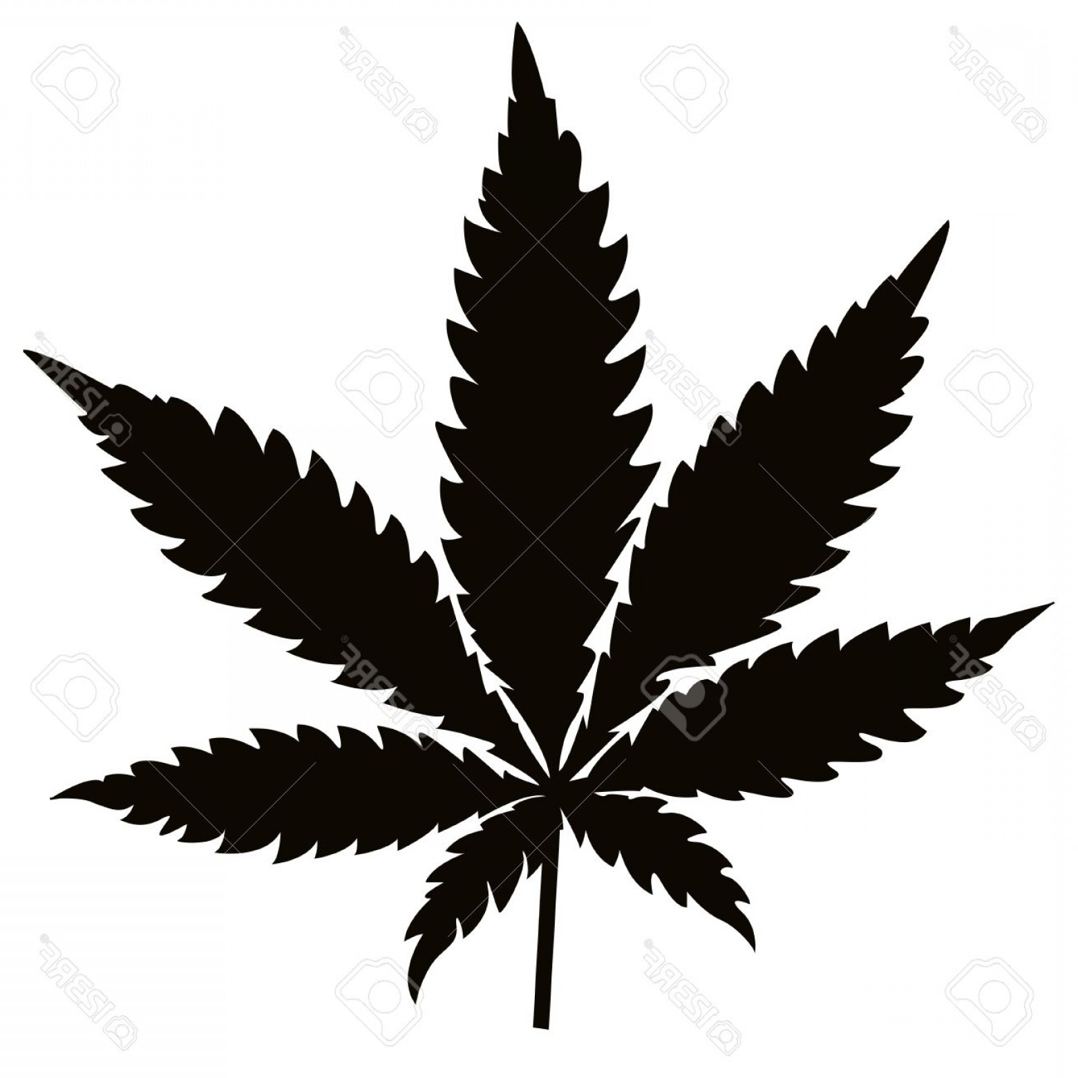 1560x1560 Pot Leaf Vector Lazttweet
