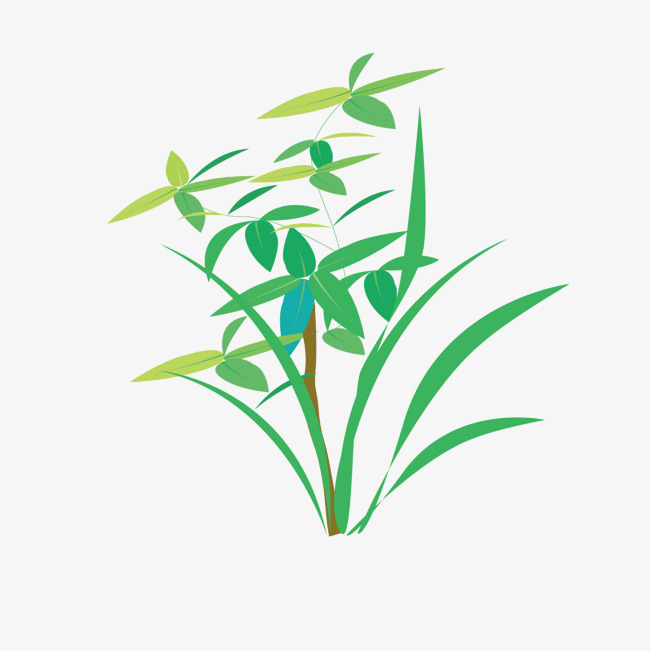 650x651 Vector Grass Weed Wheat Seedling, Grass Vector, Weed Vector, Wheat