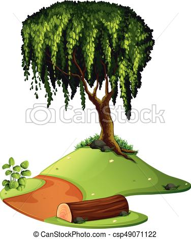 376x470 Vector Illustration Of A Weeping Willow Tree. Leaves Are