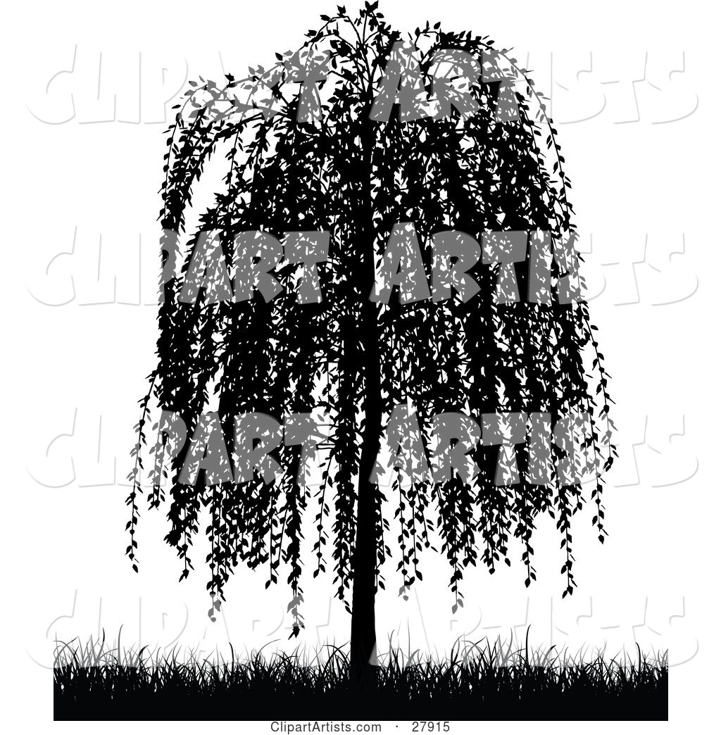 1024x1044 Black Silhouetted Weeping Willow Tree And Grasses Over White