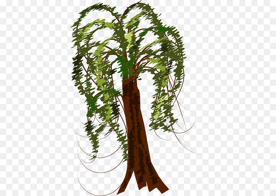 900x640 Clip Art Tree Trunk Branch Vector Graphics