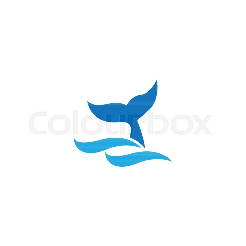 800x800 Illustration Of Whale Tail On Surface Of The Sea Vector Stock