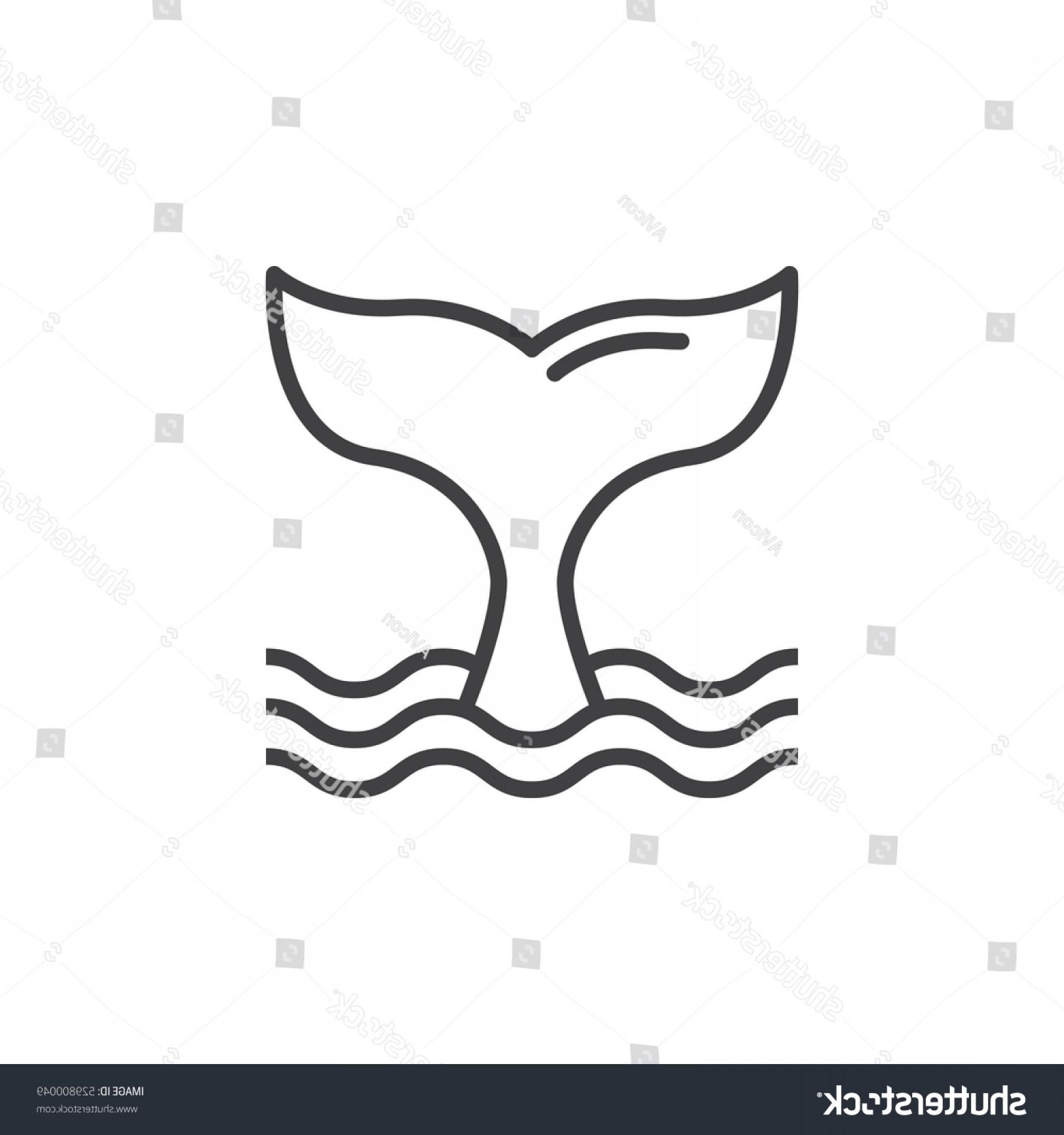 1800x1920 Whale Tail Line Icon Outline Vector Sohadacouri