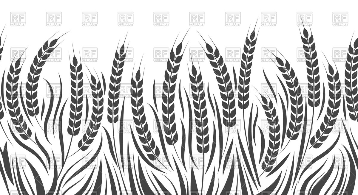 1200x655 Harvest Horizontal Pattern. Wheat, Rye Or Barley Field. Vector