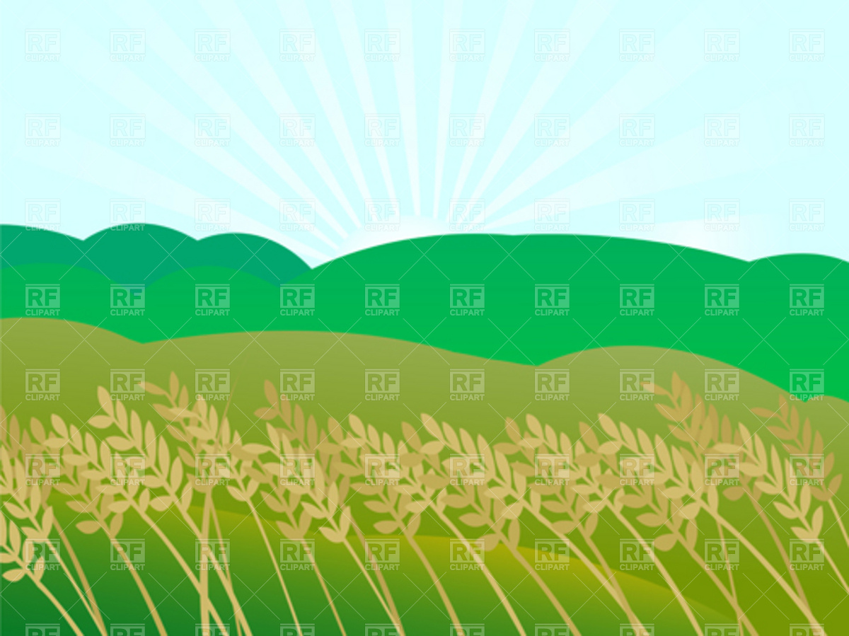 1200x899 Sunset Landscape And Wheat Field Vector Image Vector Artwork Of