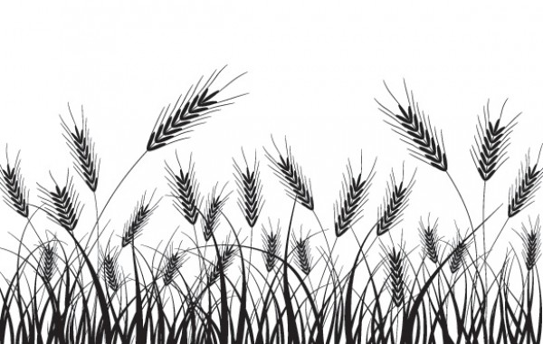 600x380 Wheat Field Silhouette Vector Background