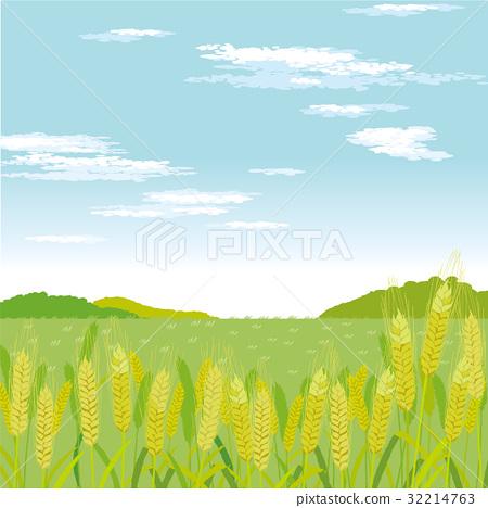 450x468 Wheat Field, Wheatfield, Vector