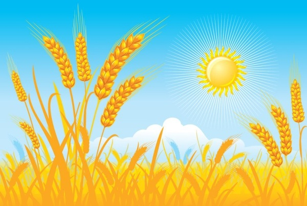 600x402 Countryside Landscape Background Cereal Field Sun Icons Free