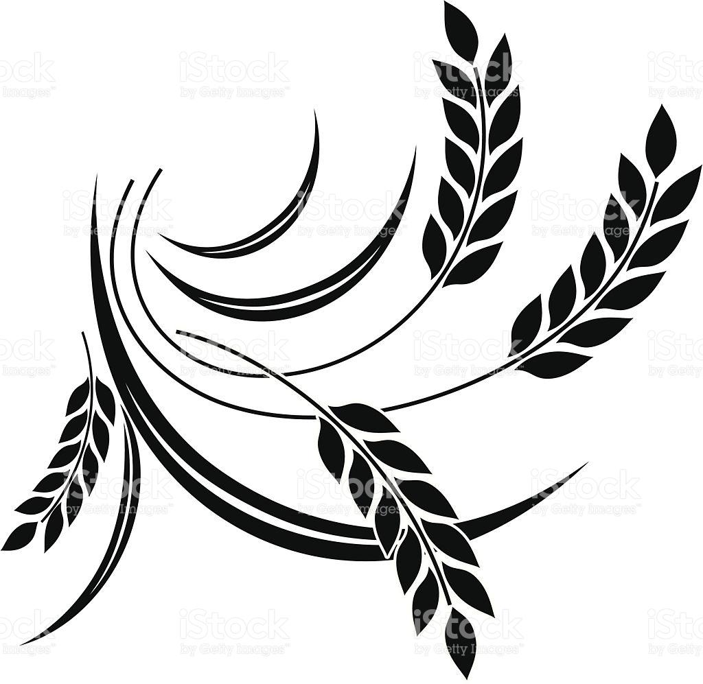1024x997 Free Wheat Icon Vector 49371 Download Wheat Icon Vector