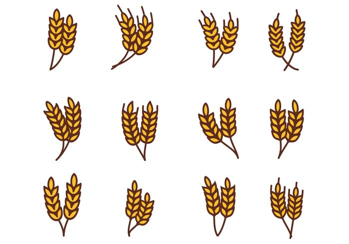 700x490 Wheat Free Vector Art