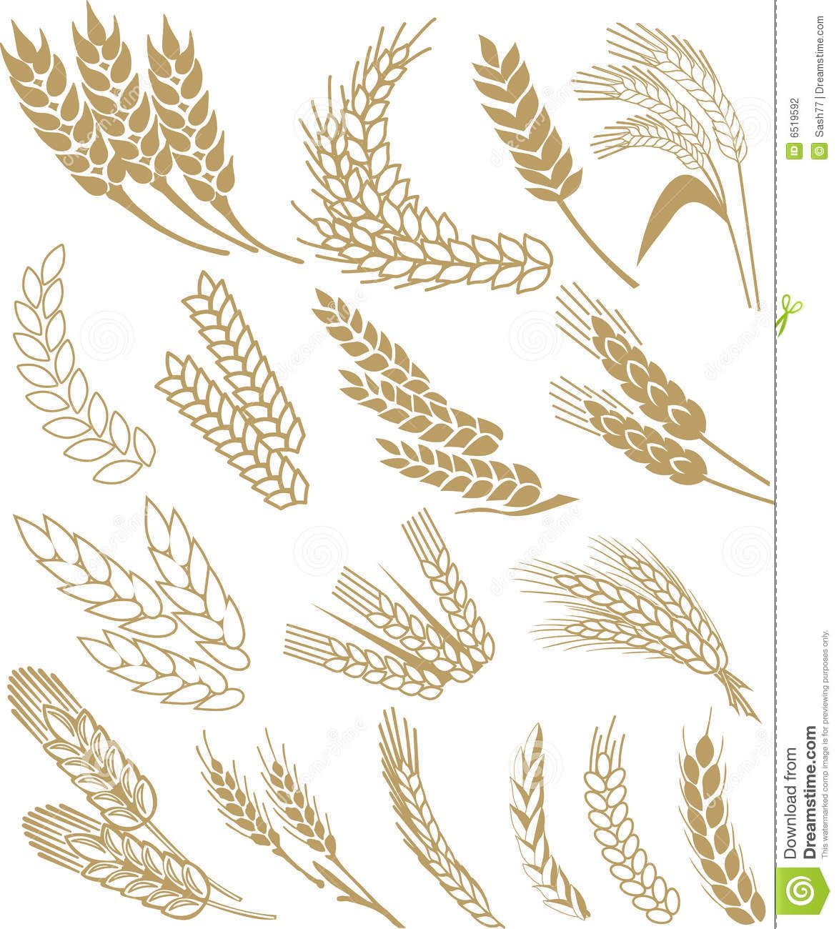 1174x1300 Wheat Vector