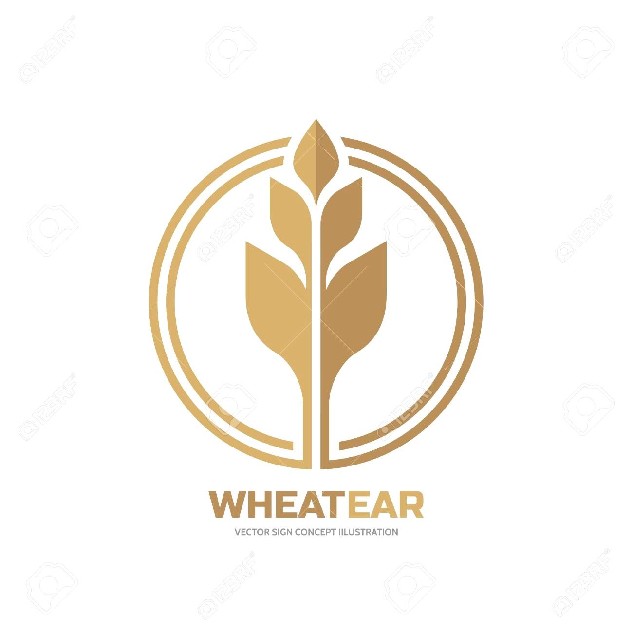 1300x1300 Wheat Vector