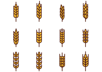 352x247 Free Wheat Vector 2 Free Vector Download 364109 Cannypic