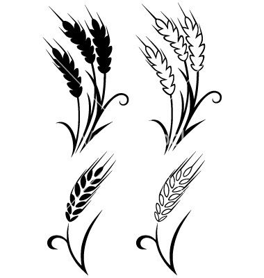 380x400 Wheat Vector Free Free Download Clip Art