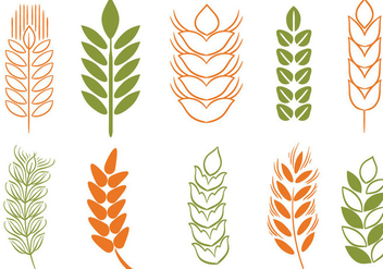 352x247 Free Wheat Stalk Vector Free Vector Download 363745 Cannypic