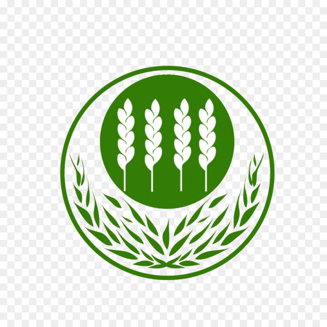 1080x1080 Png Logo Wheat Vecteur Wheat Vector Logo Arenawp