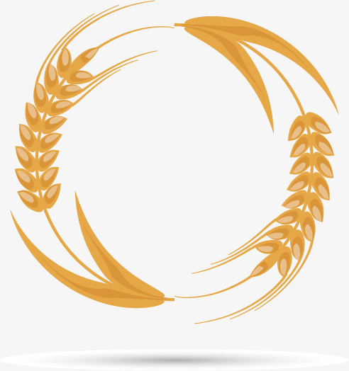 Wheat Vector Png at GetDrawings | Free download