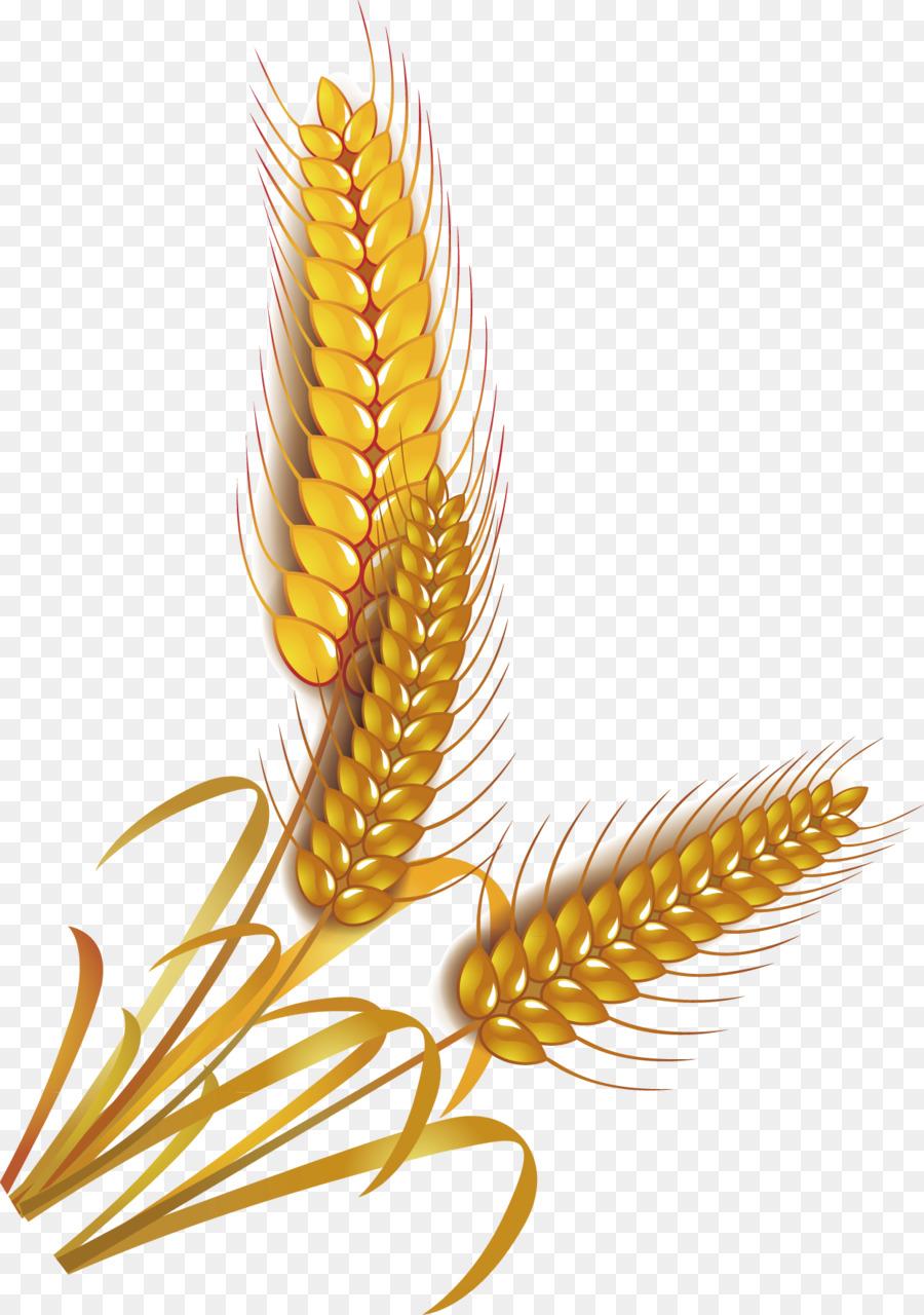 900x1280 Wheat Rice Cereal Whole Grain Clip Art