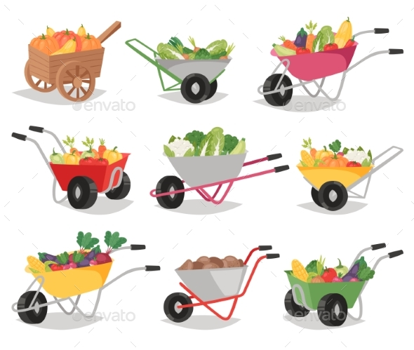 590x499 Vegetables In Wheelbarrow Vector Healthy Nutrition By Pantimetrok