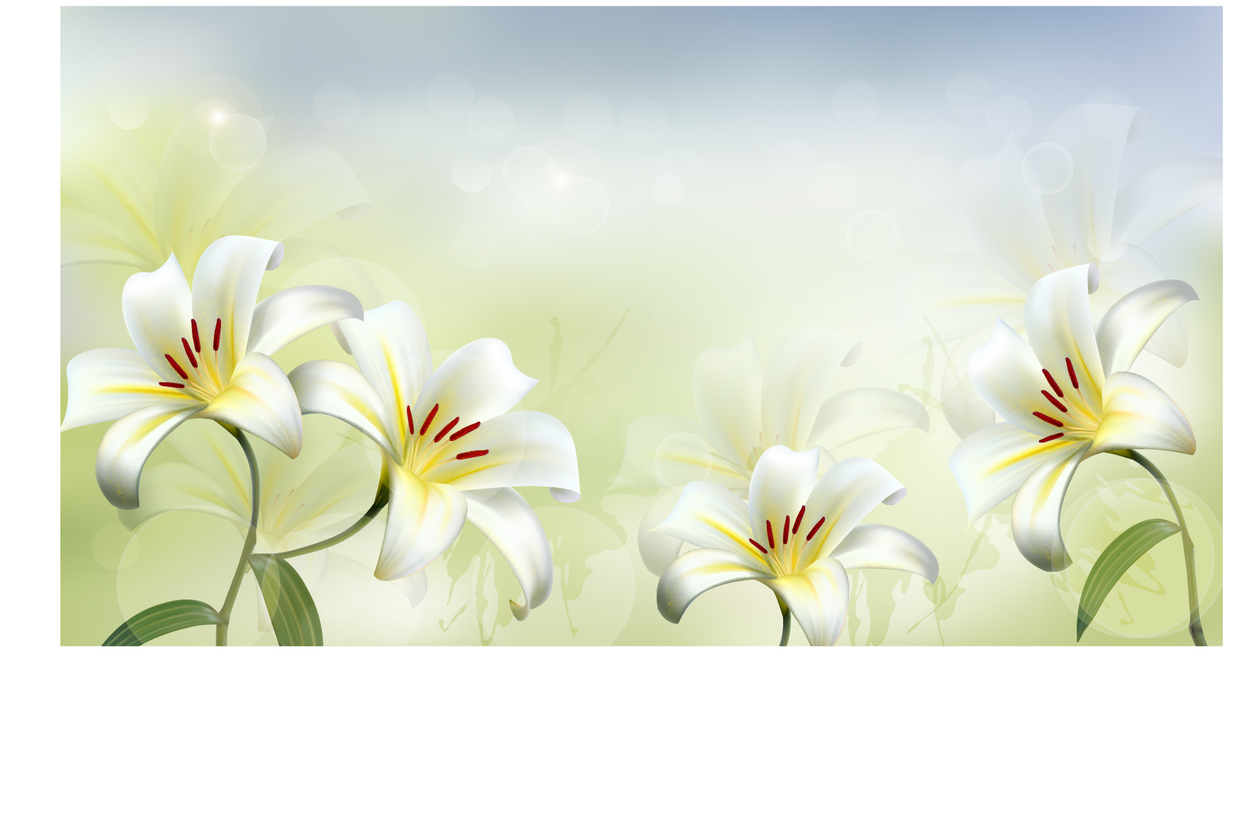 1759x1146 Beautiful White Flower Vector Background 02 Free Download