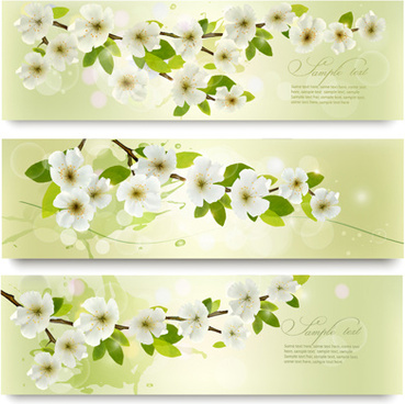369x368 White Flower Spring Banners Free Vector Download (26,276 Free