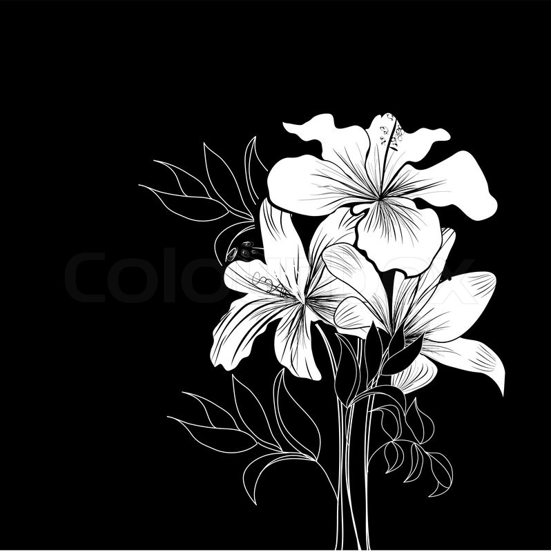 798x800 Black And White Background With White Flowers Stock Vector