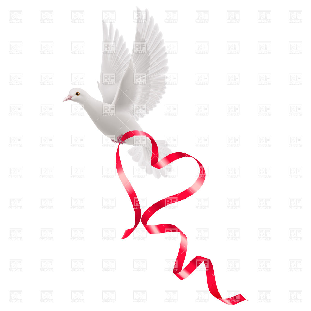 1200x1200 White Pigeon With Red Ribbon As A Heart Vector Image Vector