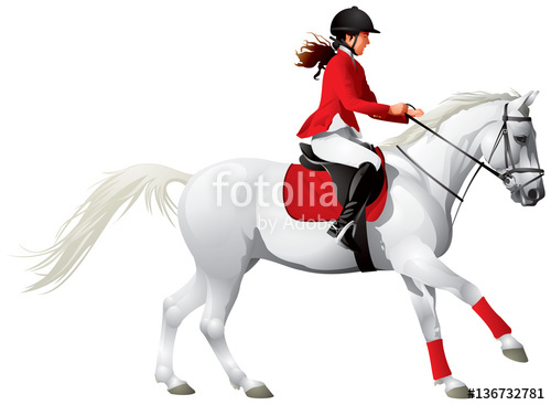 500x367 Equestrian Sport White Horse And Girl In Red Equestrian Costume
