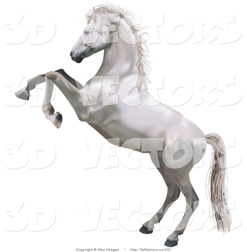 1024x1044 3d Vector Clipart Of A Rearing White Horse By Atstockillustration