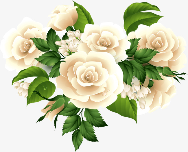 650x526 Vector Roses Bouquet, White Rose, Flowers, Camellia Png Image And