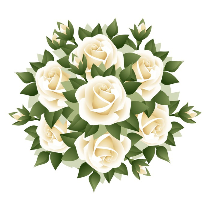 700x700 Bouquet Of White Roses. Vector Illustration. Wall Mural Pixers