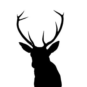 300x300 Photostock Vector Black Silhouette Of A Whitetail Deer Clip Art