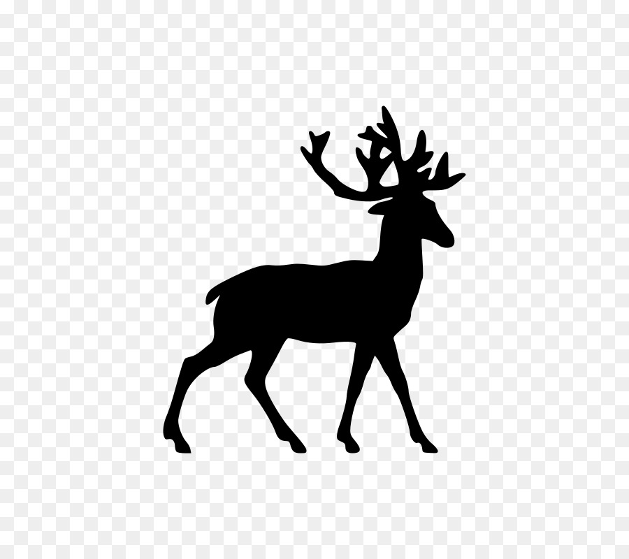 900x800 Reindeer White Tailed Deer Clip Art