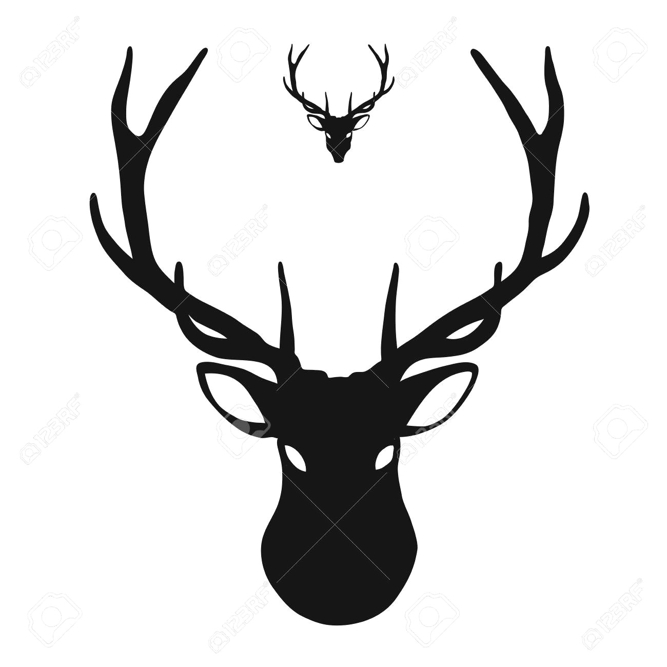 1300x1300 56558253 Hand Drawn Image Of Big White Tail Buck Head With Large