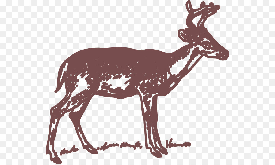 900x540 White Tailed Deer Clip Art