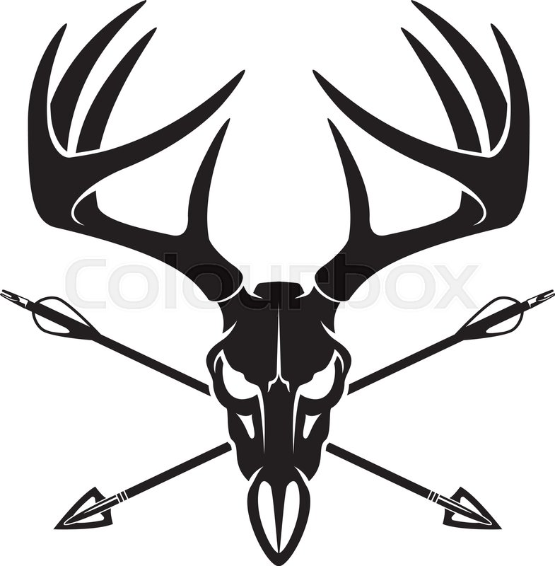 785x800 Whitetail Deer Buck Skull With Crossing Hunting Arrows Stock