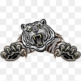 260x261 White Tiger Png Images Vectors And Psd Files Free Download On