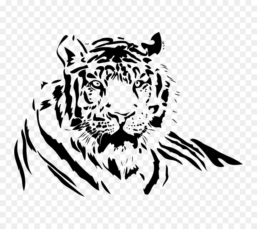 900x800 White Tiger Drawing Lion Clip Art