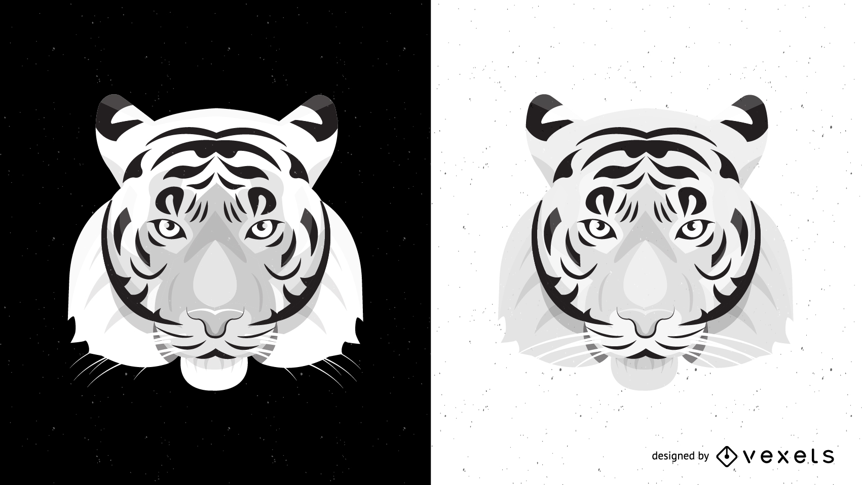 1701x958 Both Black And White Tiger Vector