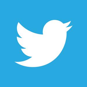 300x300 Twitter Vector Logo