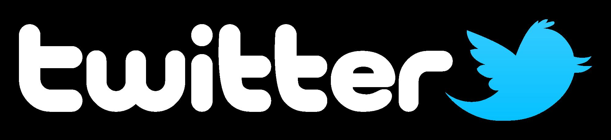 2000x458 Twitter Vector