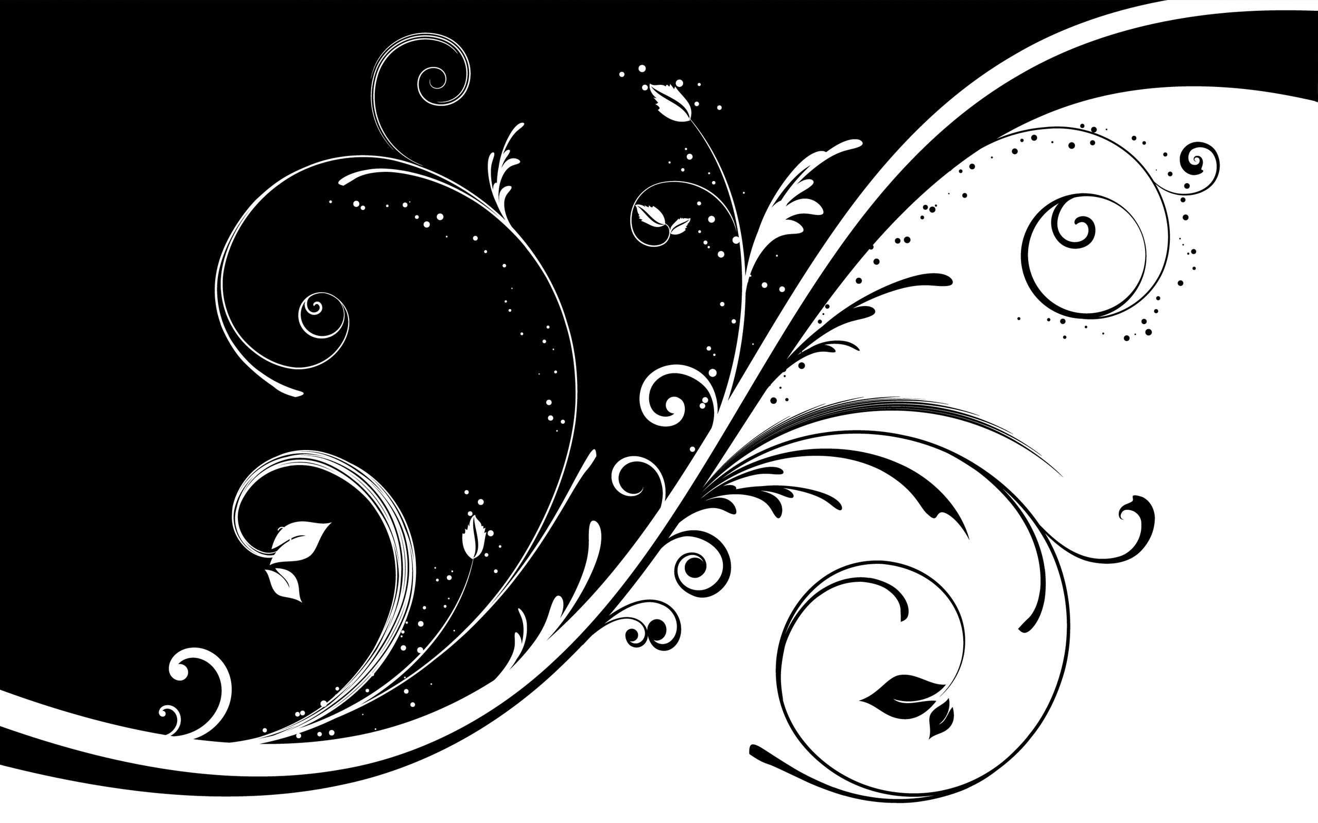 2560x1600 Black And White Vector