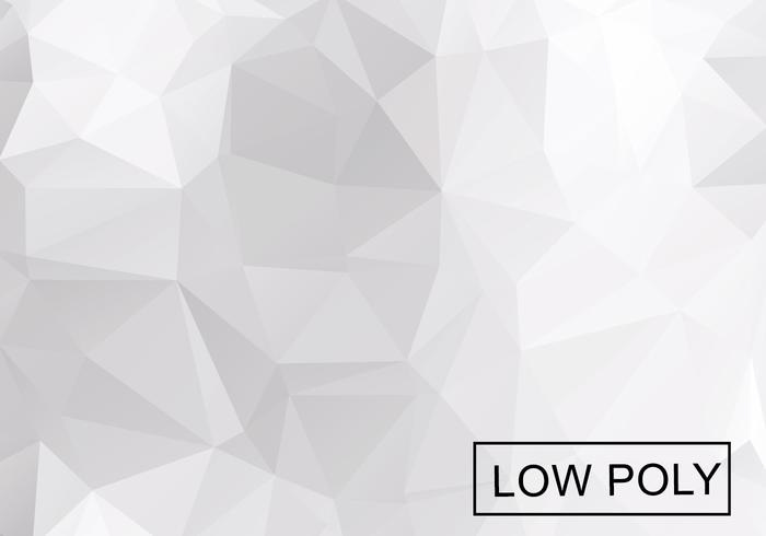 700x490 Light Grey Low Poly Background Vector