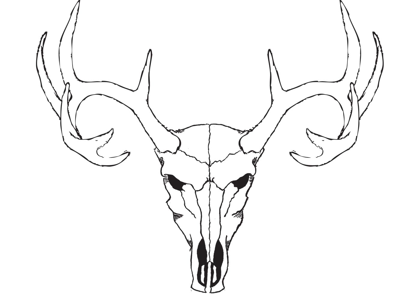 1400x980 Deer Skull Free Vector Art