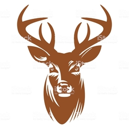 260x260 Download Deer Head Vector Clipart White Tailed Deer