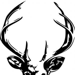 300x300 Stock Illustration Whitetail Deer Buck Head Circle Shopatcloth